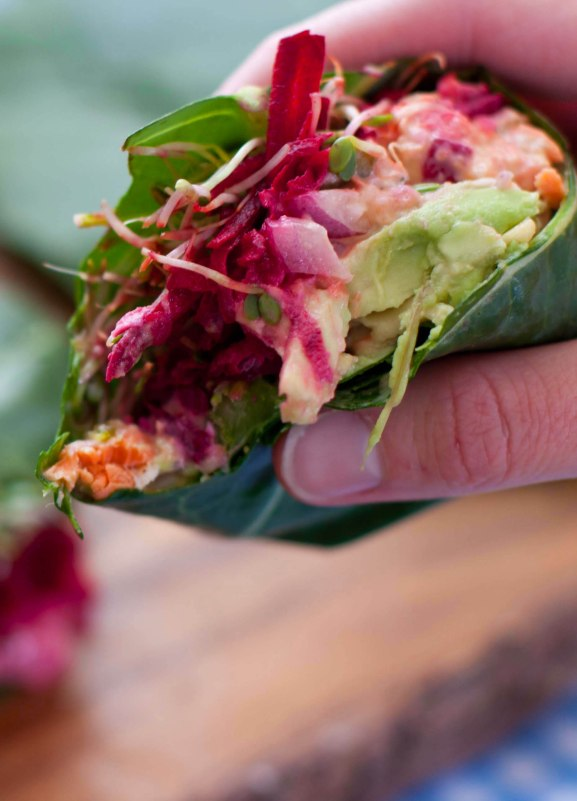 salmon salad wraps4